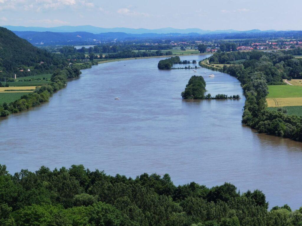 Ausblick von der Burgruine Donaustauf auf die Donau, hinten der Bayerische Wald